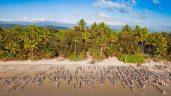 Great Barrier reef marathon